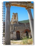 Library Of Celsus And Columns Spiral Notebook