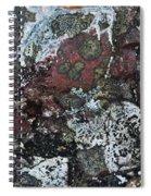 Lichen Abstract II Spiral Notebook