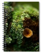 Lichen And Fungi 1 Spiral Notebook