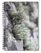 Lichen Niebla Podetiaforma Spiral Notebook