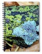 Lichen On Fallen Branch Spiral Notebook
