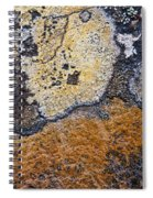 Lichen Pattern Series - 19 Spiral Notebook