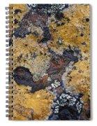 Lichen Pattern Series - 10 Spiral Notebook