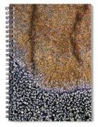 Lichen Pattern Series - 11 Spiral Notebook