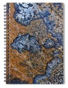 Lichen Pattern Series - 35 Spiral Notebook
