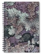 Lichen Pattern Series - 57 Spiral Notebook