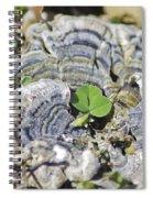Lichen The Shamrock Spiral Notebook