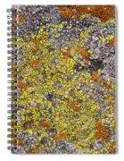 Lichens Spiral Notebook