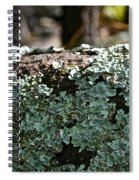 Lichens Lace Spiral Notebook