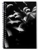 Licorice Sky Spiral Notebook