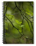 Life And Thorns Spiral Notebook