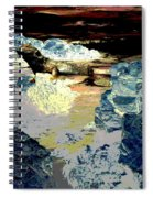 Life In The Tidepools Spiral Notebook