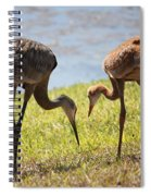 Life Lessons Spiral Notebook
