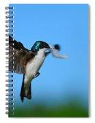 Light As A Feather Spiral Notebook