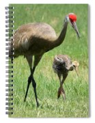 Like Father Spiral Notebook