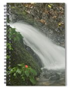 Likeke Falls 51 Spiral Notebook