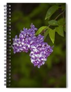 Lilac Flower Blossoms No. 319 Spiral Notebook