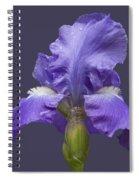 Lilac Iris Spiral Notebook