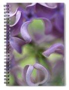 Lilac Syringa Sp Flower, Close Spiral Notebook