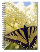 Swallowtail Lilac Spring Photo Spiral Notebook