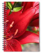 Lilies In Red Spiral Notebook