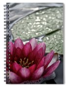Lily And Pad Spiral Notebook