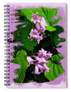 Lily Of The Valley - In The Pink #1 Spiral Notebook