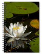Lily On The Pond Spiral Notebook