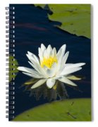 Lily Pad And Flower Spiral Notebook