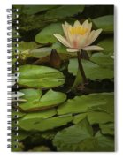 Lily Pads And Blossoms. No204 Spiral Notebook