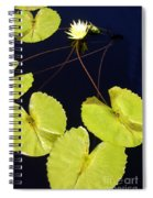 Lily Pads And Lotus Blossom Spiral Notebook