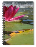 Lily Pads And Petals Spiral Notebook