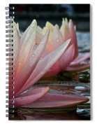 Lily Sisters Spiral Notebook