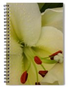 Lily White Spiral Notebook