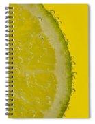 Lime Slice Soda 2 Spiral Notebook