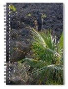 Limestone Canyon Spiral Notebook