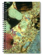 Limestone With Fossils Spiral Notebook