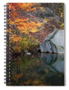 Lincoln Woods Autumn Boulders Spiral Notebook