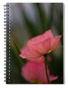 Lines Of Floral  Spiral Notebook