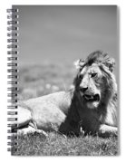 Lion King In Black And White Spiral Notebook