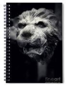 Lions Head 2 Spiral Notebook