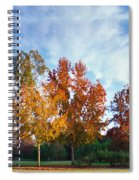 Liquid Amber Trees Spiral Notebook