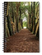 Lismore, County Waterford, Ireland Spiral Notebook