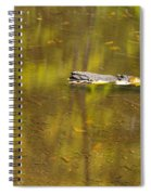 Little Carp River Bed 1 Spiral Notebook