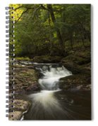 Little Carp River Falls 3 Spiral Notebook