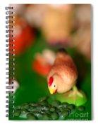 Little Chicken Spiral Notebook