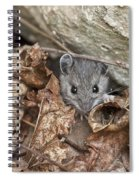 Little Creatures Need Love Too Spiral Notebook