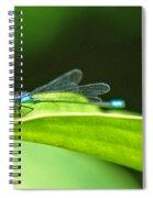 Little Dragonfly Spiral Notebook