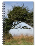 Little Girl And Wind-blown Tree Spiral Notebook