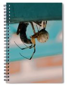 Little Miss Venom Spiral Notebook